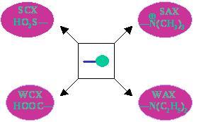 sepax graph
