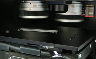 platine microscope UV